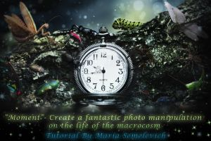Create fascinating  photomanipulation by MariaSemelevich