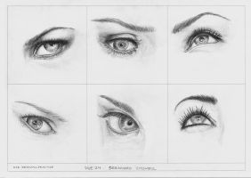 Eye drawings by benskywalking