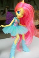 My Little Pony Equestria Fluttershy by AdeCiroDesigns