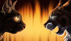 Hawkfrost and Brambleclaw by Rae-elic