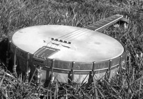 Old Banjo by nancy24601