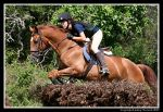 Jagger Over Steeplechase by LNorwick