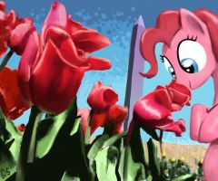 Pinkie Smells Roses at Washington Monument by GSphere