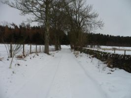 Stock ~ Winter Road by CaitlinDickson