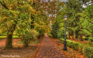 The city Park. HDR-picture. by magyarilaszlo