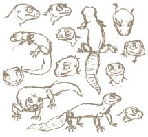 gecko sketches wehweh by HereLiesDeadSquirrel
