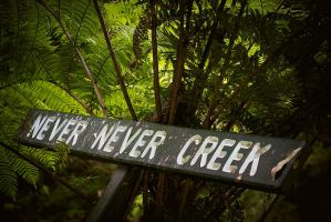 Never Never Creek by DrewHopper