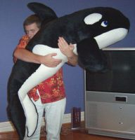 Giant Orca Plushie by Fallimar