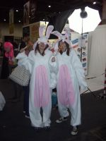 Anime Expo - Raving Rabbids 2 by BabemRoze