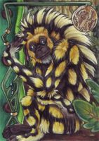 MAoI - Honeycomb Monkey by BloodhoundOmega