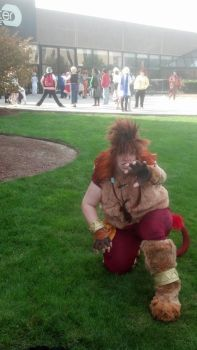 AAC '13  - FF - Final Furball by TheArtFaerie111