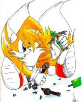 Tails by TheRunawaySheDevil