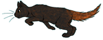 ThunderClan - Redtail by WildpathOfShadowClan
