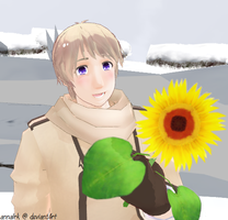Russia with sunflower by annalrk