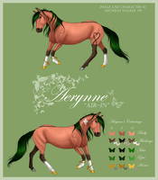NEW Aerynne Reference by MichelleWalker