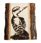 Downy Woodpecker Woodburning by EdgedFeather