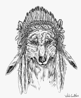 Indian wolf by whitecrow-soul