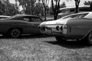 Chevelles by Doogle510