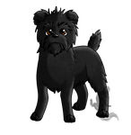 Affenpinscher by PulsingLights