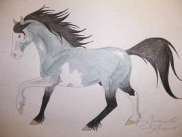 Mustang Horse 2 by Raiha