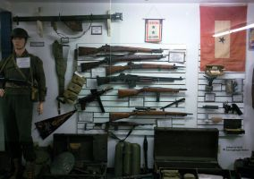 WW II  Display by RavingEagleMedia