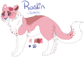 Roslin Reference Sheet by PinkPoodle543