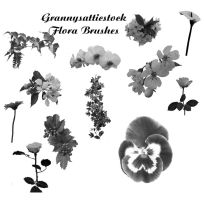 Flora Brushes by GRANNYSATTICSTOCK