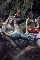 Song of the Sirens by TEMPERATE-SAGE