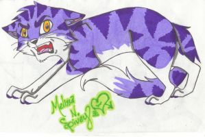 Angry Cat by Cobalt-Flame