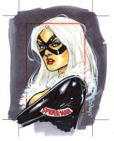 Black Cat Artist proof by gravyboy