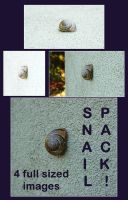 Snail pack by Blinded-Stock