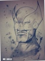 Wolverine painting by crow110696