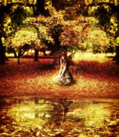 Autumn Fairy by Ferelwing