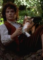 Frodo and His Daemon by LJ-Todd