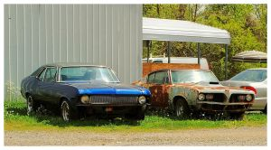 Two Old Cars Rusting Away by TheMan268