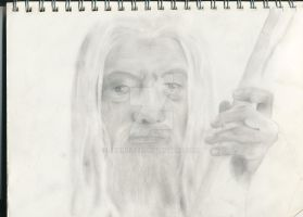 Gandalf Continuation Trial by Jennuitte