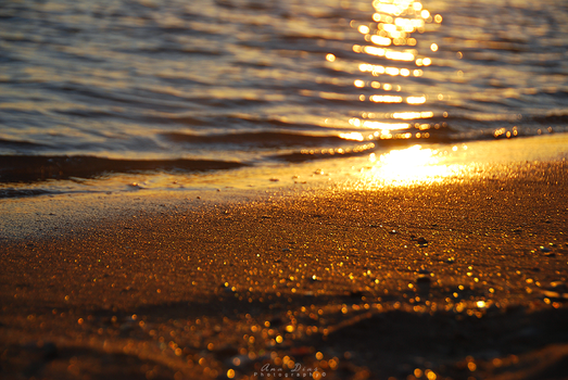Golden Hour by Ana-D