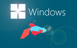 Windows 8 with Beta fish by cyogesh56