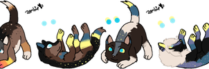 Nimra x Unnamed Litter - Closed by KittehzAdopts