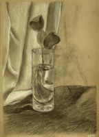 Still life with glass by Cunami-in-october