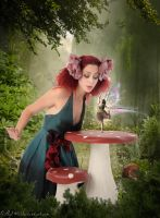 faes fairy tale by gilly14