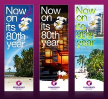 Hawaiian Airlines Banner by SilentMiaow
