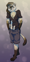 Artie the Ferret by the-b3ing
