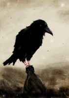 The Crow by loysa