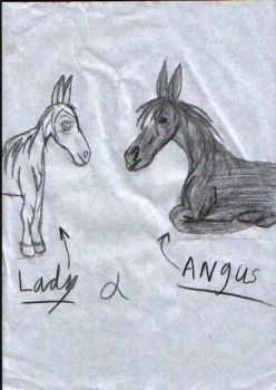 lady  and  angus by kk20152d