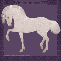 Winter Import 732 by Psynthesis
