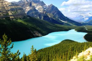 Peyto Lake by LILYFlowerr