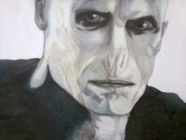Lord Voldemort by blueskies123363