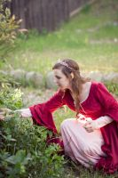 Arwen's Rose Dress by ShadowfaxCreations