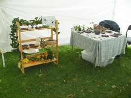 Apple Daze Booth 2 by FlyingFrogCreations
